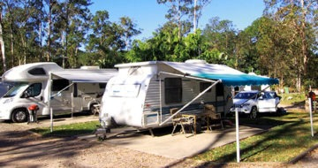 Stay 7 Pay 6 at Landsborough Pines Holiday Special