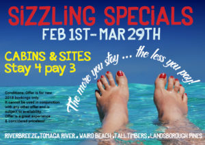 SNAG A SIZZLING SPECIAL!